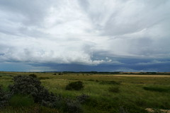 Storm over marsh