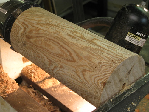 Ficus log on lathe
