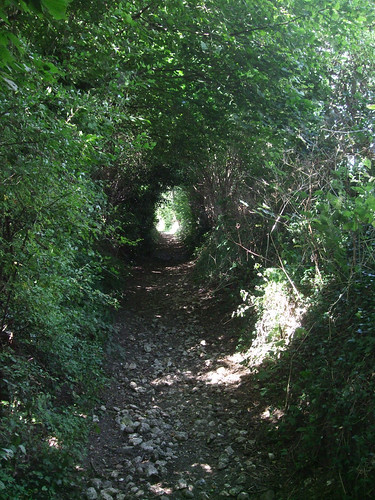 tunnel-path