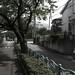 町田樹 画像92