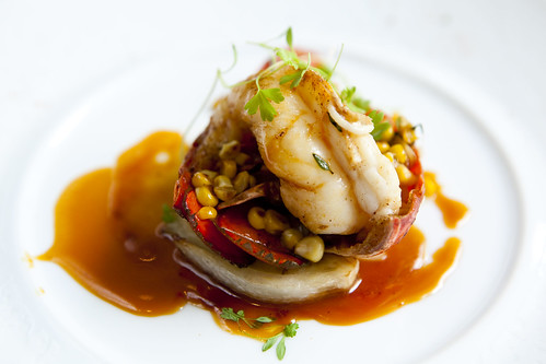 Roasted Maine Lobster with Sweet Corn, Baby Fennel and Basil