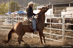 Team Penning 9 (Javier Melero Sebastián) Tags: light sunset horses people horse naturaleza brown man color tree verde nature animal animals azul clouds rural canon landscape caballo cheval atardecer caballos eos spain cowboy huesca farm country feria competition paisaje pony western campo animales cowgirl jinete cavallo cavalo vacas cavall potro vaquero penning yegua graus aragón equino galope teampenning abigfave cattlepenning aragn aeetw