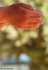Save Water ... (ANOODONNA) Tags: macro water speed drops high bokeh alrasheed alanood العنود الرشيد anoodonna