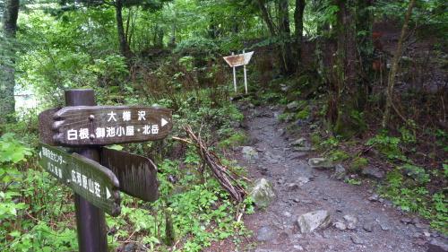 北岳2 (3).JPG