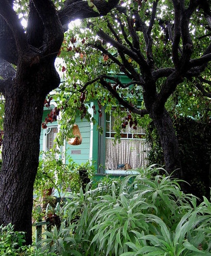 Ogle Hawcroft House 4