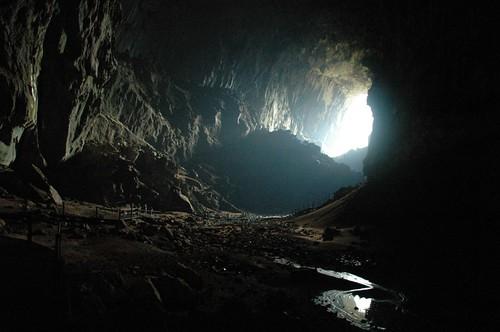 Deer & Lang Cave