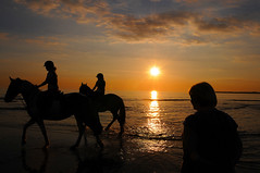 Ogmore 2649 (kgvuk) Tags: sunset sea horses water wales equestrian ogmore