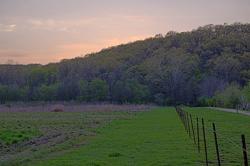 Forest 44 Conservation Area, near Valley Park, Missouri, USA - prairie and hill at dusk 2