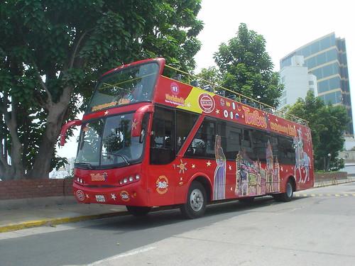 20100310017