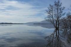 Loch Lomond (b13bhm) Tags: lochlomond 6d lochlomondandthetrossachsnationalpark millarochybay