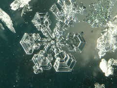 Ice-crystal-011