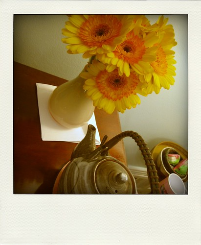 flowers 015-pola