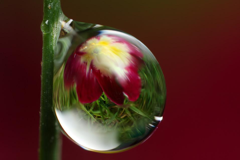 IMAGE: http://farm4.static.flickr.com/3533/3292467346_5c8168836e_o.jpg