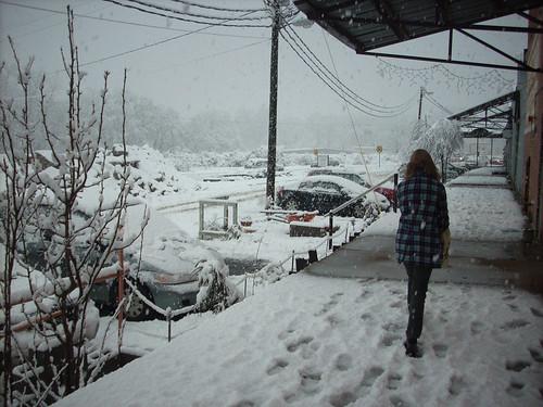 SNOW 2646