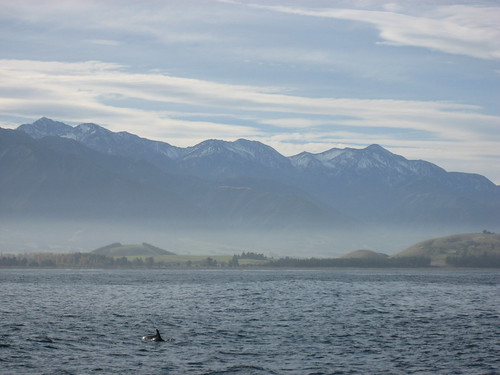 I <3 New Zealand