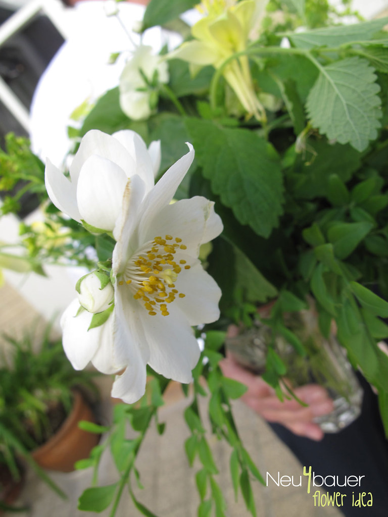 floweridea