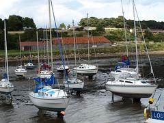 scotland village kilns harbour fife estuary forth limestone charlestown yachts boathouse masts rigging keels ovens limekilns olympuse510 thebestofday gununenlyisi brianforbes couriercountry