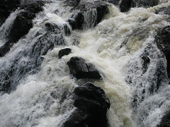 IMG_2930 (jimmy_chivas) Tags: scotland dunkeld 2008