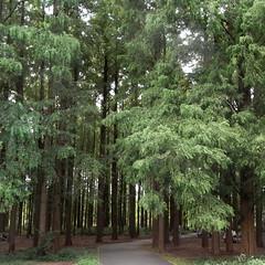 Mizumoto Park 04