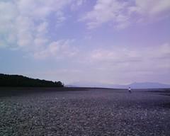 富士山!三保の松原にて