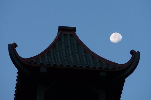 Pagoda Moon