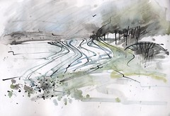 Furrowed field and trees (skyeshell) Tags: trees landscape countryside watercolour furrowedfield freebrushwork