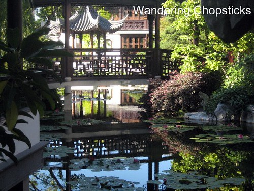 Day 4.12 Lan Su Chinese Garden (Portland Classical Chinese Garden) - Portland - Oregon 9