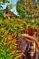 Springin' onto Splash Mountain (Tours Departing Daily) Tags: california spring disneyland anaheim splashmountain crittercountry disneylandhdr