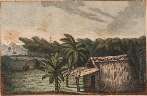 Ajoupas du Lagon peinier, appellé le Cirque des Bambous. (frontispiece)