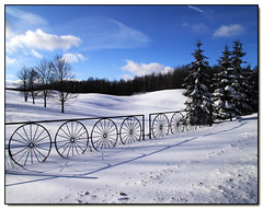 Wagon Wheels (Lisa-S) Tags: blue trees winter sky white snow ontario canada clouds rural canon fence landscape lisas explore soe allrightsreserved invited caledon 50d 897 canon50d platinumphoto anawesomeshot theunforgettablepictures vosplusbellesphotos getty2009 copyrightlisastokes getty20090324