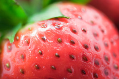 closeup (*k t*) Tags: red macro fruits closeup canon strawberry strawberries 100mm vitaminc 30d vege fragaria