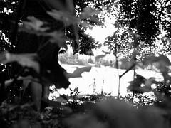 Kochelsee (Kthe deKoe) Tags: leiden depression nerv einsamkeit eng stimmung krank einsam verlierer weakness schmerz trauer enge traurig depressionen leid verletzung verletzt unzufrieden kraftlos melancholie traurigkeit verzweiflung verlust gefuehl erschoepft deprimiert schmerzen einzeln verlieren melancholisch verzweifelt nerven enttaeuschung enttaeuscht depressiv gefuehle sinnlosigkeit unzufriedenheit deprimierend erschoepfung depressiven deprimierten energielosigkeit erfolgslos kraftlosigkeit wertlosigkeit stimmungslage gedrueckt gedruecktheit tieftraurig tieftraurige tieftrauriger tieftrauriges depressivitt