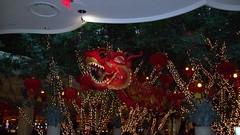 Welcoming Dragon @ Wynn Casino (Doc Holly) Tags: streetlife yearoftheox wynnhotellasvegas vegas2009