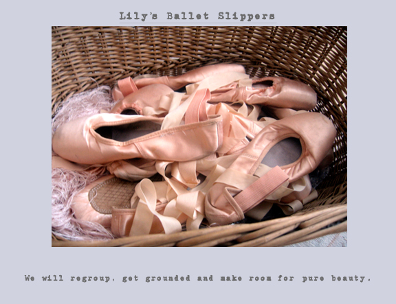 Lily's ballet slippers_final copy