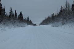 road_8135 web