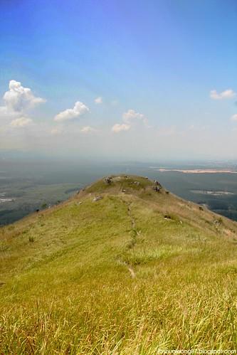Broga hill 12