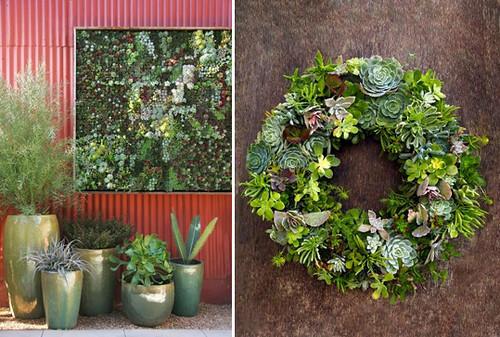 Flora Grubb Succulent Wall Wreath Katy Elliott