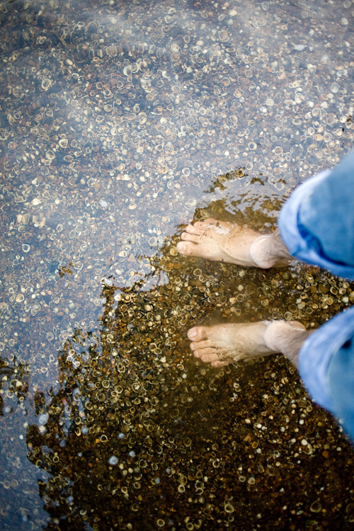 Image of My Feet in the Cahaba