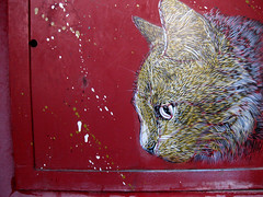 C215 - Paris (Vitry-sur-Seine) (C215) Tags: streetart art french graffiti stencil christian pochoir masacara szablon c215 schablon gumy piantillas