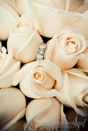 Mandi and Pierre - Bouquet and Ring
