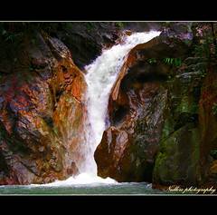 Colorful Waterfall! (Nullerz) Tags: camera pink red orange color green nature water colors yellow digital photoshop canon wow river relax thailand island design waterfall amazing cool soft peace purple shot graphic natural breath peaceful fresh jungle waterfalls rivers thai frame excellent land framing quite phuket capture multi lightroom mywinners abigfave theunforgettablepictures 100commentgroup grouptripod nullerz