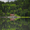 Green Explosion (Philippe Sainte-Laudy) Tags: trees lake reflection nature forest paradise sweden bratanesque theunforgettablepictures philippesaintelaudy theperfectphotographer nikond300 world100f