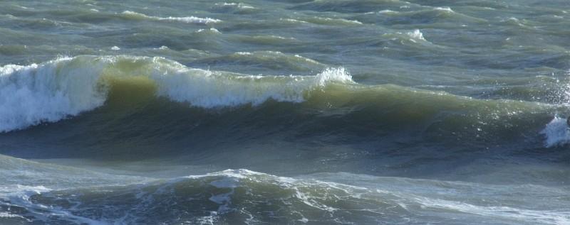 wave surf 03