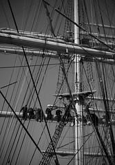 Kruzenshtern - Tall Ships Atlantic Challenge 2009 - Vigo (_madmarx_) Tags: bw boat ship bn atlantic galicia tall ropes russian 2009 challenge pontevedra vigo cordas mastro kruzenshtern mástil arboladura madmarx