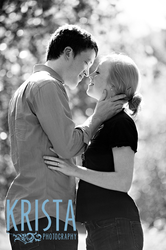 eSession in The Great Meadow