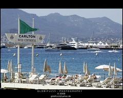 Cannes - Beach Club Hotel Carlton (GLOBI  FUZZI) Tags: france frankreich riviera cannes ctedazur beachclub alpesmaritimes hotelcarlton sonnenschirm liegesthle globifuzzi