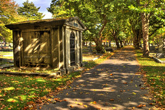 Ross Bay Cemetery HDR (Brandon Godfrey) Tags: world pictures autumn trees light orange canada green fall colors grave leaves point landscape photography photo amazing fantastic scenery colours shadows shot photos shots pics earth path britishcolumbia sony picture scene images victoria canadian graves falling vancouverisland creativecommons pacificnorthwest northamerica alpha dslr vanishing dappled 2009 gravestones hdr outstanding leeves a300 crd disappearing capitalregion photomatix rossbaycemetery tonemapped tonemapping fairfeild greatervictoria dslra300 sonya300