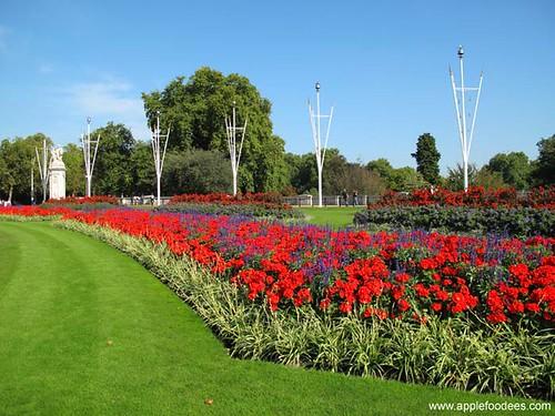Buckingham Garden