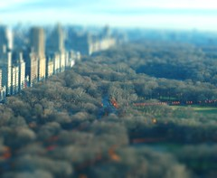 The Gates - Fake Tilt Shift (rgusick) Tags: 2005 nyc newyorkcity panorama orange newyork art centralpark faves february comments saffron christo thegates 200502 favorited 20050215 gatesmemory commented tiltshiftmaker