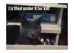 Filekat (allistrations) Tags: cat file filing organize